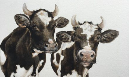 Art At The Cowshed