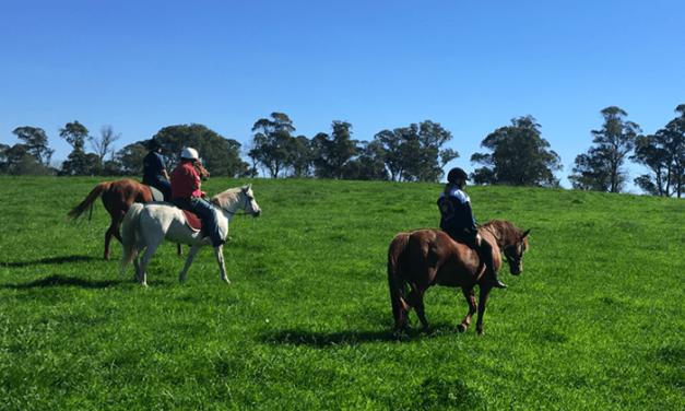 School Holiday Activities in the Southern Highlands